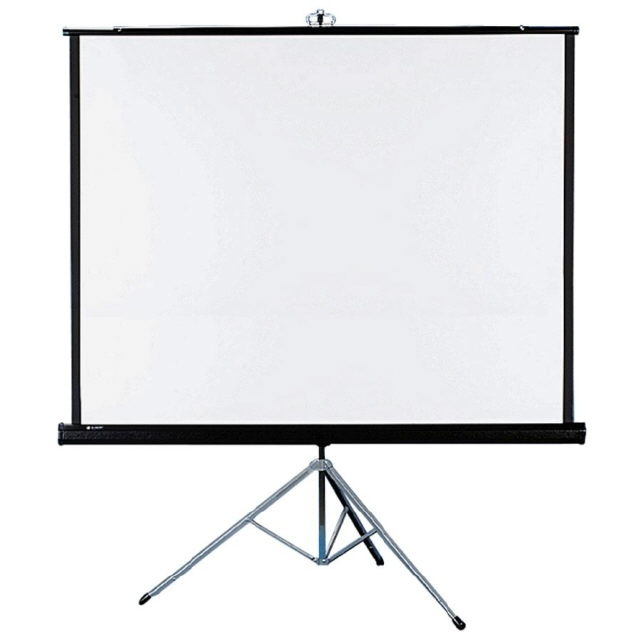 Where to find SCREEN, PROJECTOR 70 X70 in Lexington