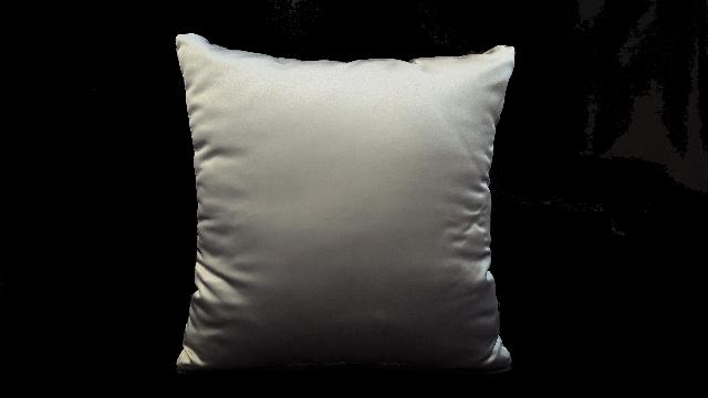 Where to find PILLOW, 14 X14  SILVER in Lexington