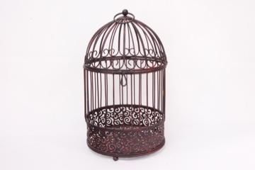 Where to find CARD HOLDER, BIRDCAGE IRON in Lexington