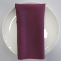 Rental store for NAPKIN, PLUM 20X20 in Lexington KY