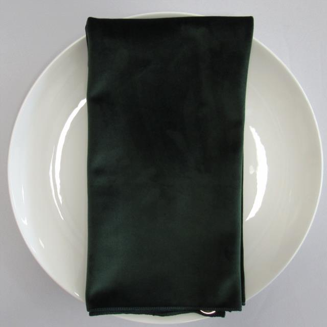 Where to find NAPKIN, GREEN HUNTER VELVET 20X20 in Lexington