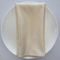 Rental store for NAPKIN, GOLD SATIN 20X20 in Lexington KY