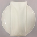 Rental store for NAPKIN, IVORY SATIN 20X20 in Lexington KY