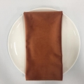 Rental store for NAPKIN, SPICE VELVET 20X20 in Lexington KY