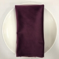 Rental store for NAPKIN, PLUM VELVET 20X20 in Lexington KY