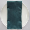 Rental store for NAPKIN, OCEAN VELVET 20X20 in Lexington KY