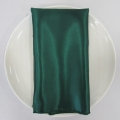 Rental store for NAPKIN, EMERALD SATIN 20X20 in Lexington KY